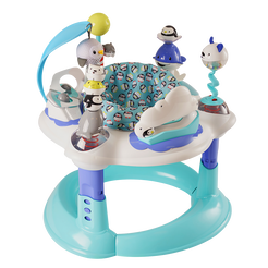 Polar Playground Bouncing Activity Center